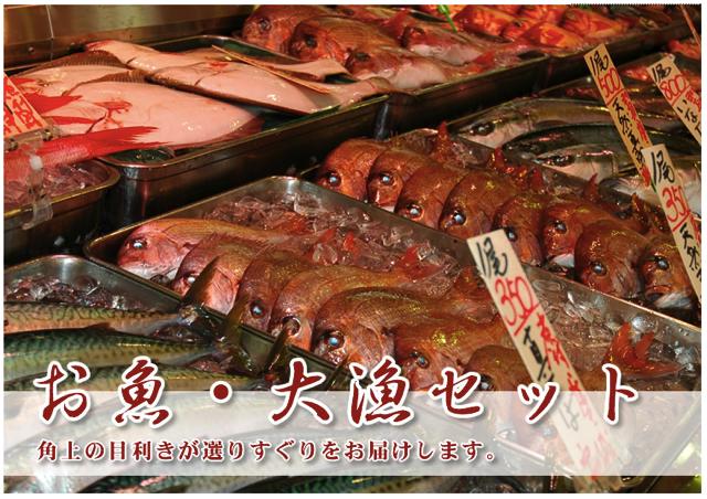角上魚類通販
